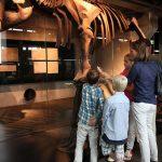 Das Ruhr Museum auf Zollverein