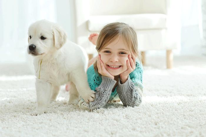 Welche Haustiere sind für Kinder geeignet