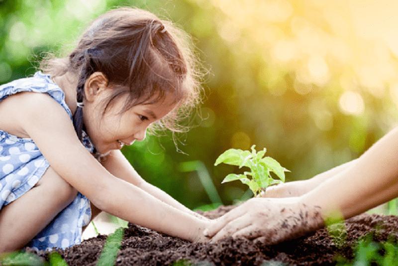 So wichtig, wie selten: Kinder für die Umwelt begeistern
