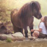 "Erlebnis Kindergeburtstage rund um's Thema ""Pony"""