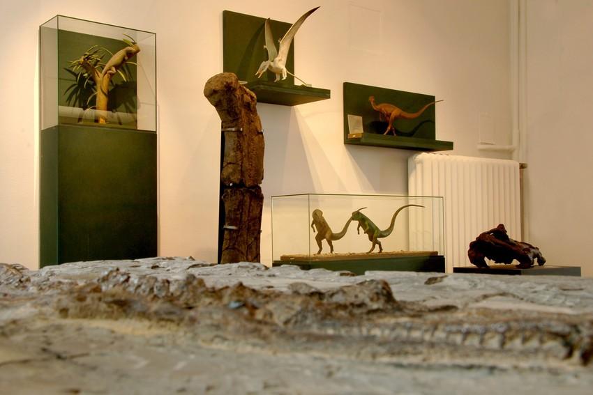 Kinder- und Familienführung im Mineralien-Museum: Auf den Spuren der Dinosaurier