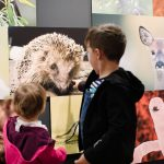 Kinder- und Familienführung im Ruhr Museum: Hund, Katze, Maus - Mensch und Tier im Revier